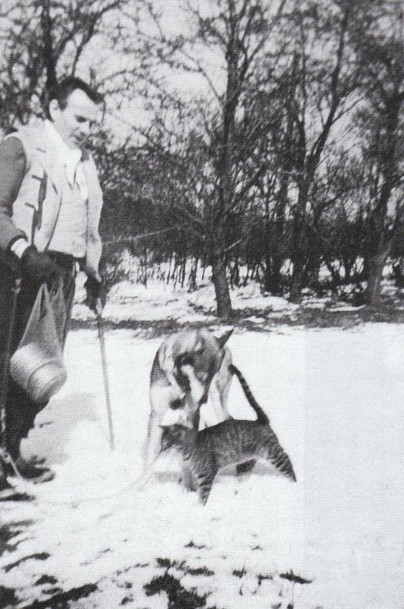 Céline, Bessy and Bébert, Körsor, Denmark, c. 1948