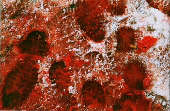 Photo by Andrew Testa: Bloody footprints in the snow, Kosovo, 1999